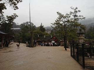 神社内への入り口.jpg
