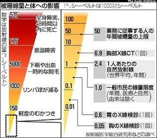 放射線比較.jpg